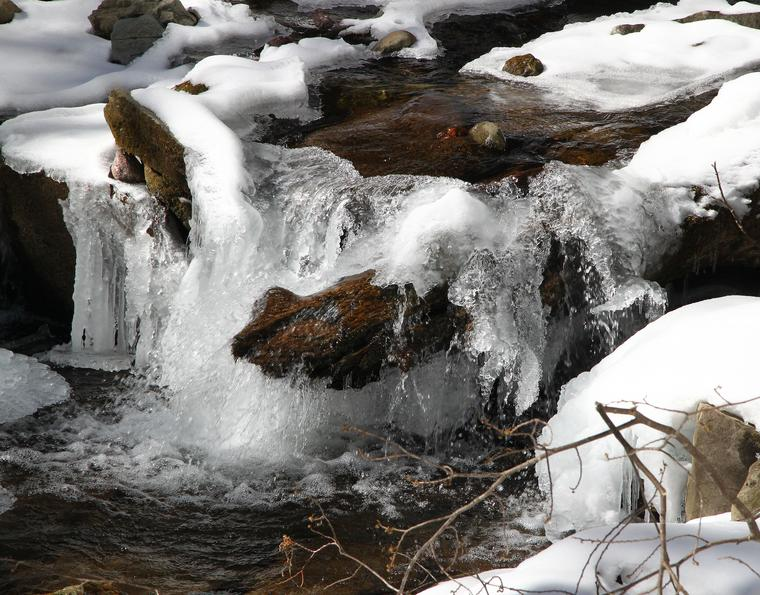 January Thaw photo
