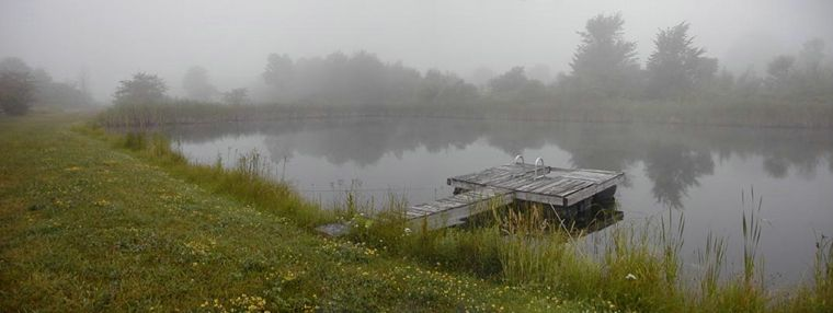 Misty Pond photo