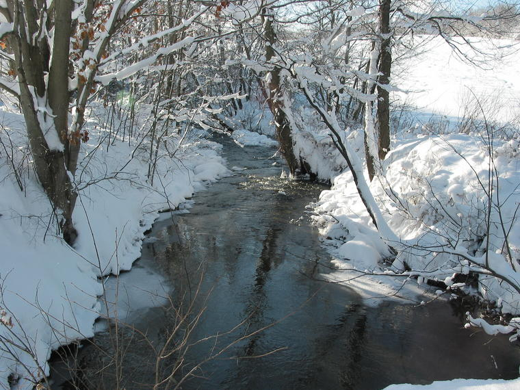 Brook in Winter photo