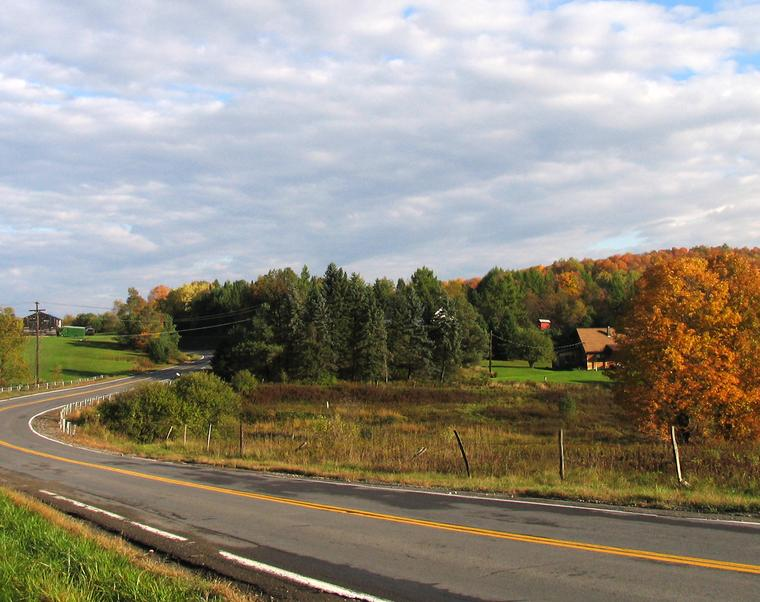 Autumn on Nanticoke Road photo