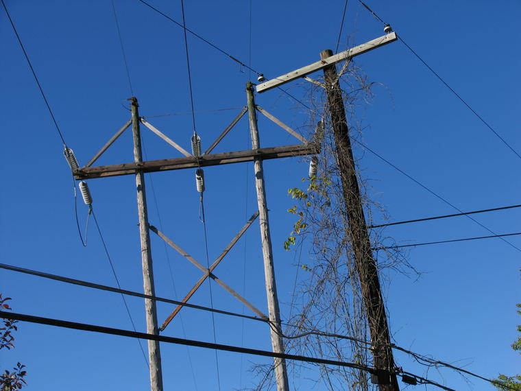 High Wires photo