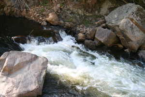 """White Water on the Ausable"""