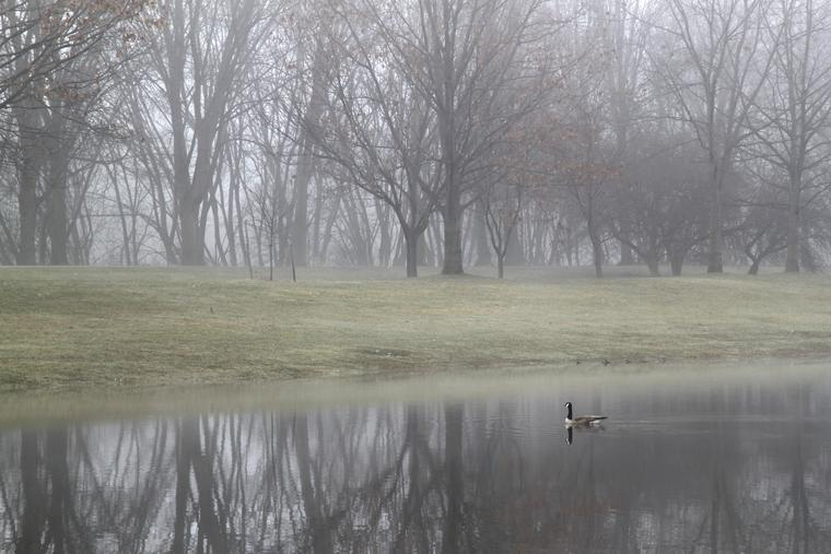 Foggy morning in Otsiningo Park photo