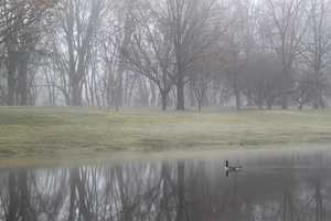 """Foggy morning in Otsiningo Park"""
