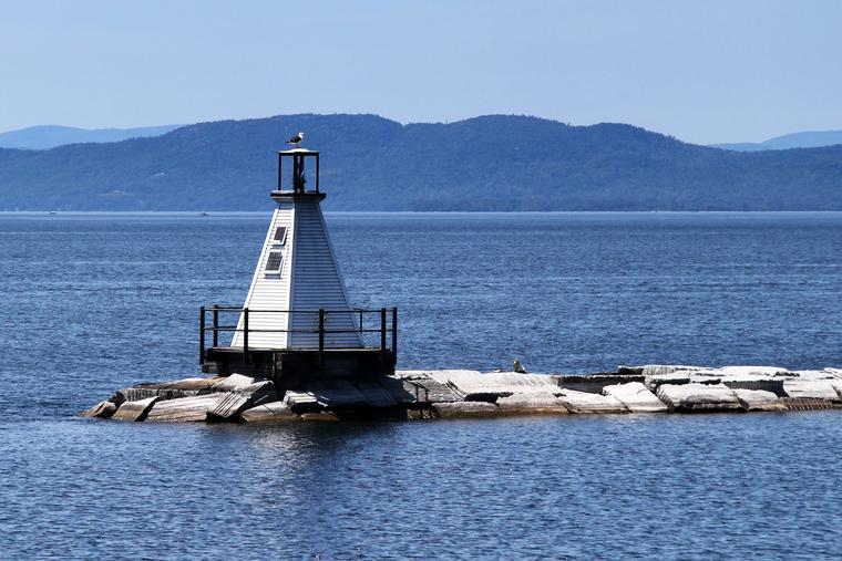 Burlington Lighthouse with guardian gull photo